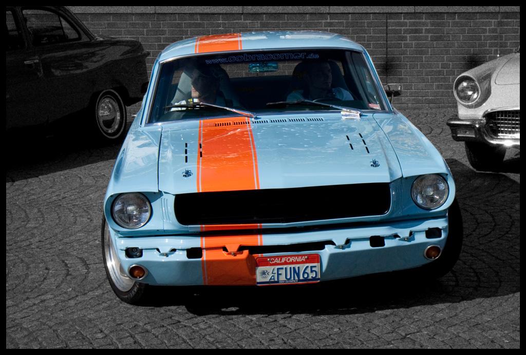 Mustang Fun