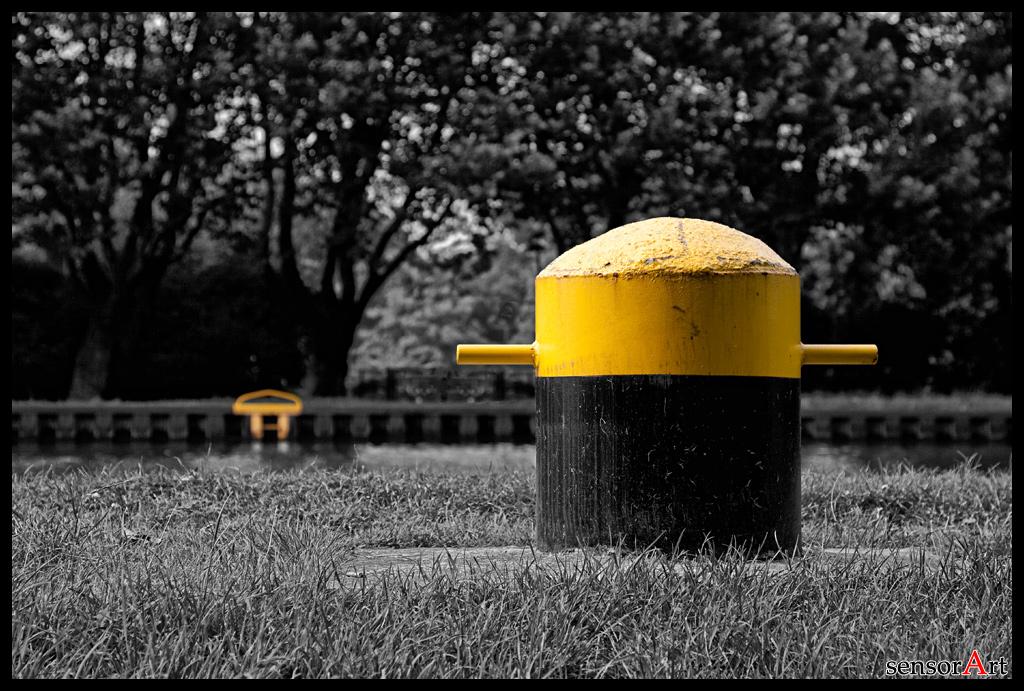 2 mal Gelb
