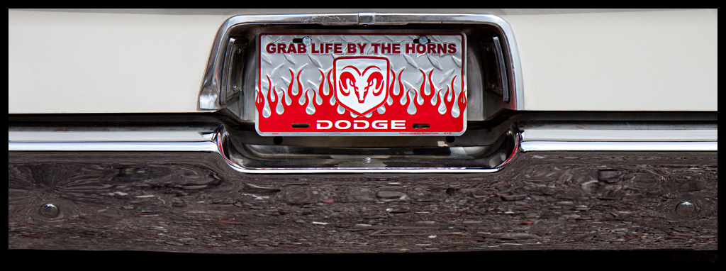 Grab Life By The Horns