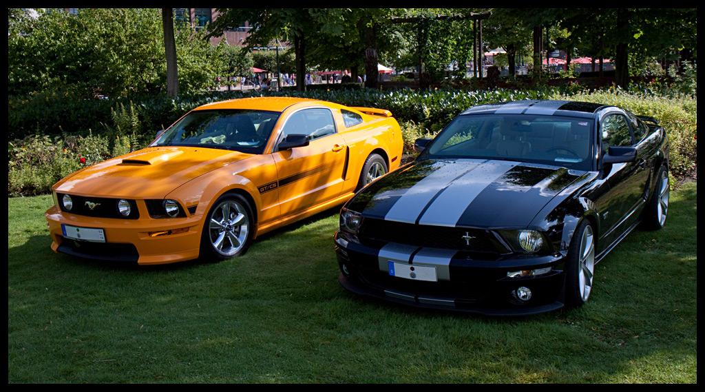 Mustang Doublepack