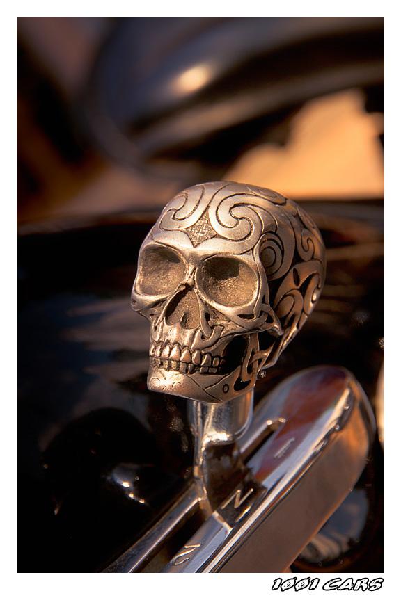 Sunshine Skull