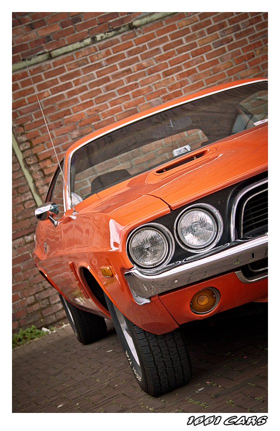 Orange Challenger - II