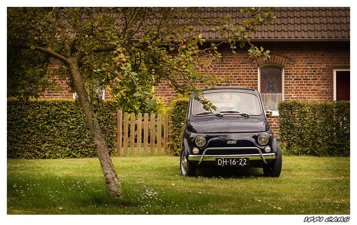 Fiat 500 im Obstgarten