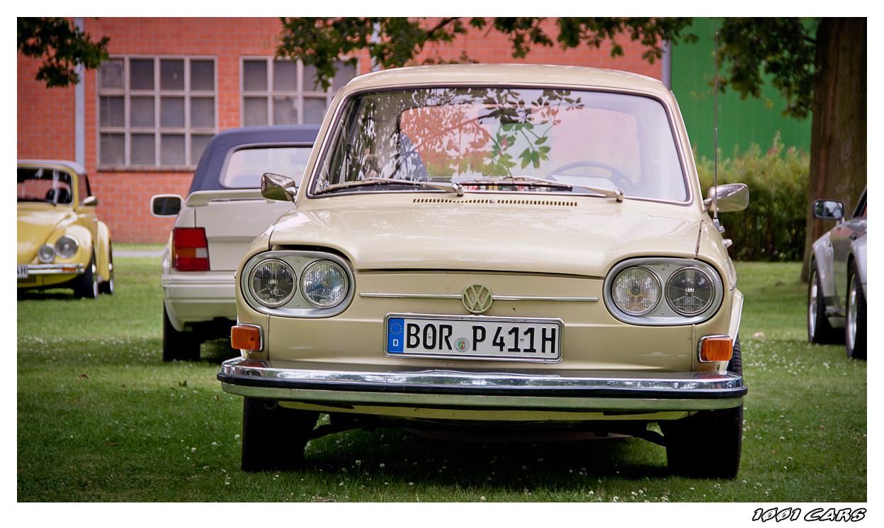 VW 411 - Nasenbär