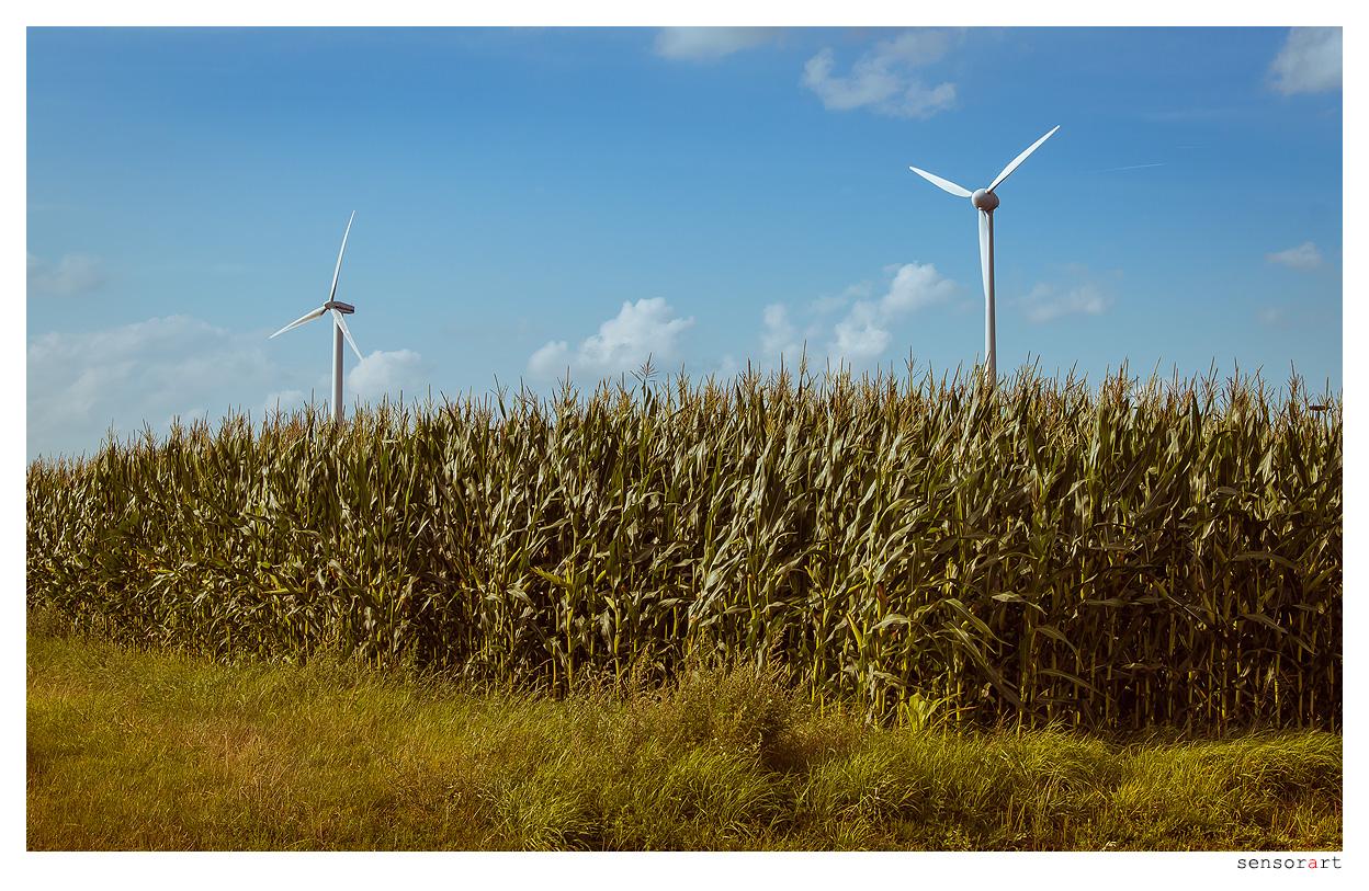Windkraft - I