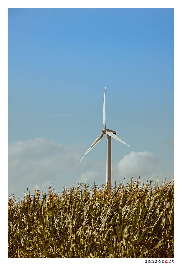 Windkraft - II