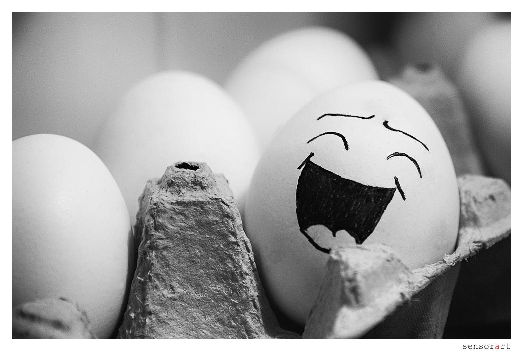 Funny Eggs - I