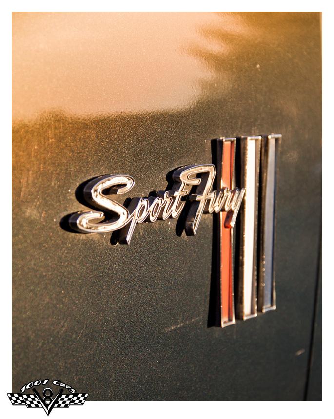 Sport Fury