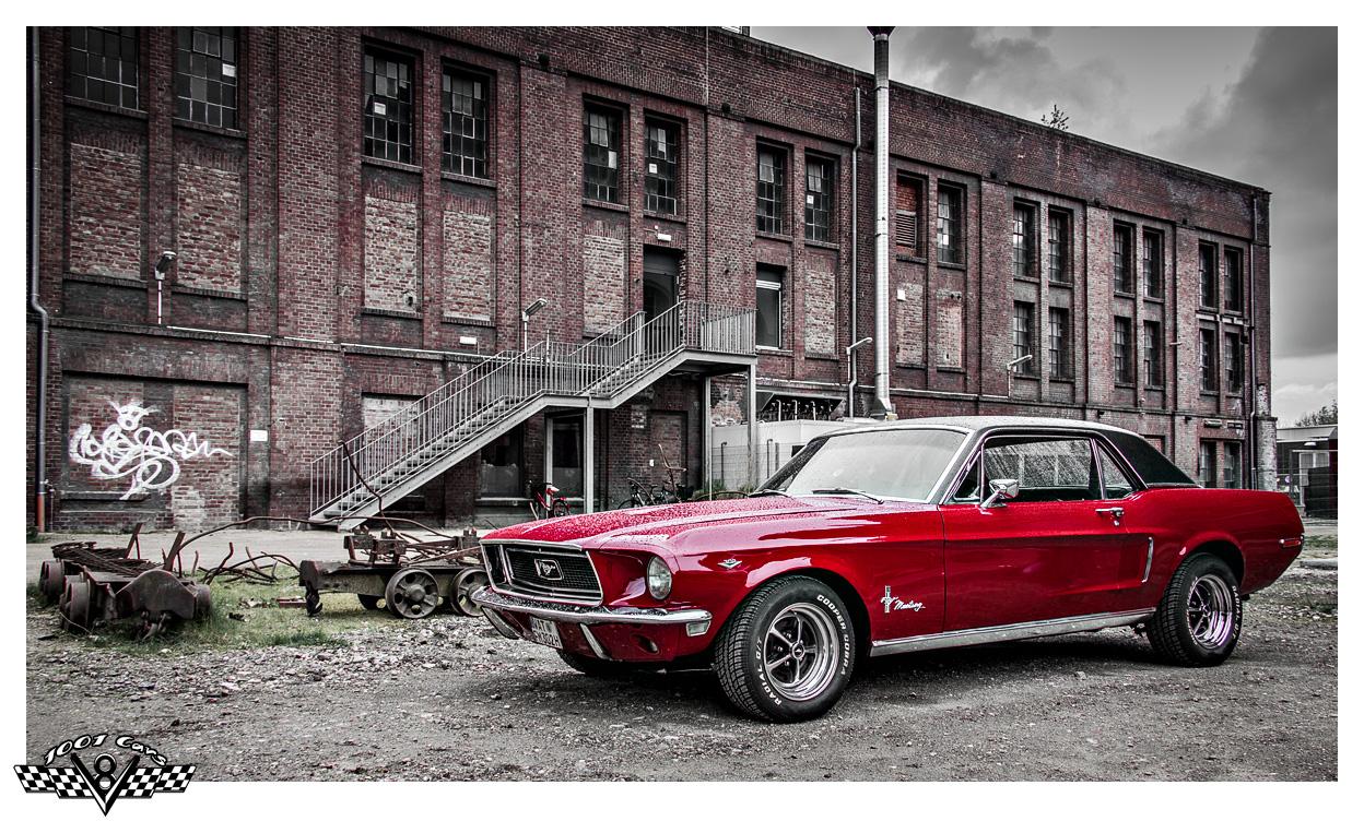 Red Mustang